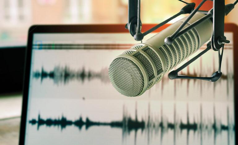 Professional microphone w/waveform